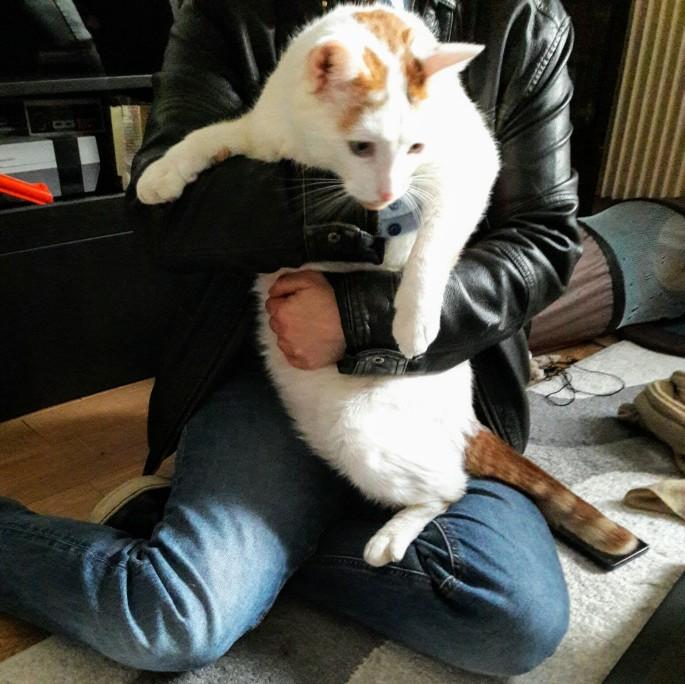 Photo de Lou (avec un chat)